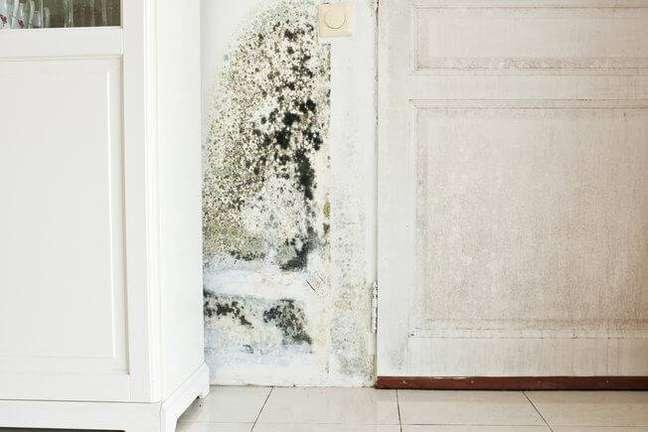8. Tirar o mofo da parede é importante para evitar problemas de saúde Foto iStock