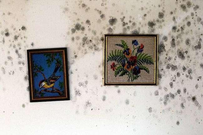 4. Tirar o mofo da parede é importante para não danificar objetos também. Aprenda como tirar mofo da parede. Foto Arulex