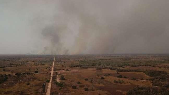 Incêndio no Cerrado, em foto de 2020; futuro parece preocupante para maioria dos jovens brasileiros, diz pesquisa