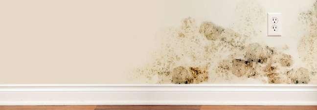 6. Veja como tirar mofo da parede é necessário para manter a casa agradável – Foto Moldman