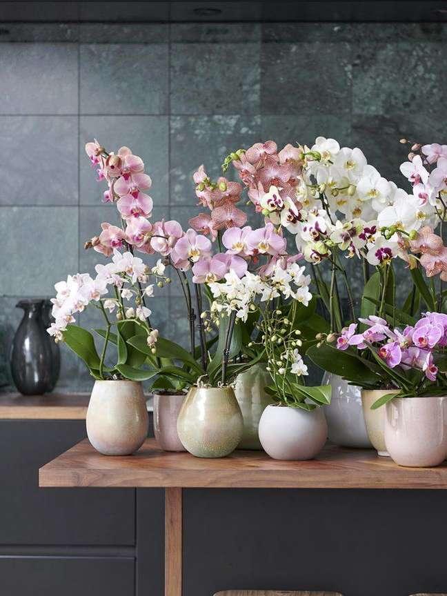 50. Vasos de flores para decoração de sala – Foto The Joy Of Plants