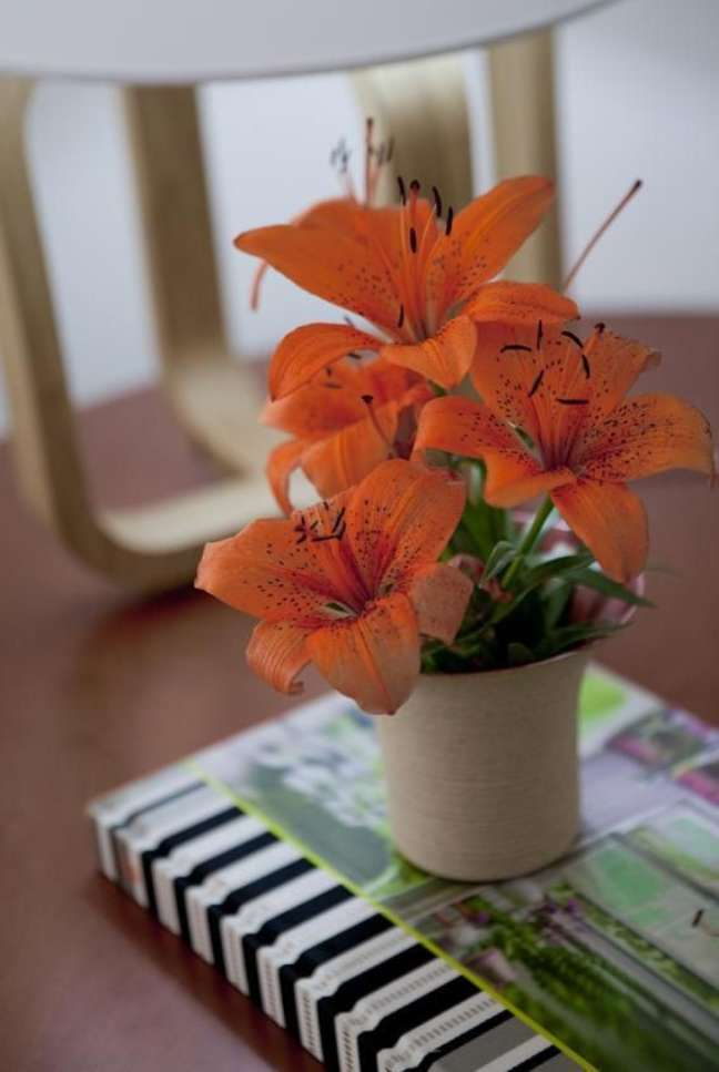 39. Vaso de flor para sala decorada com enfeites charmosos – Foto Deborah Roig