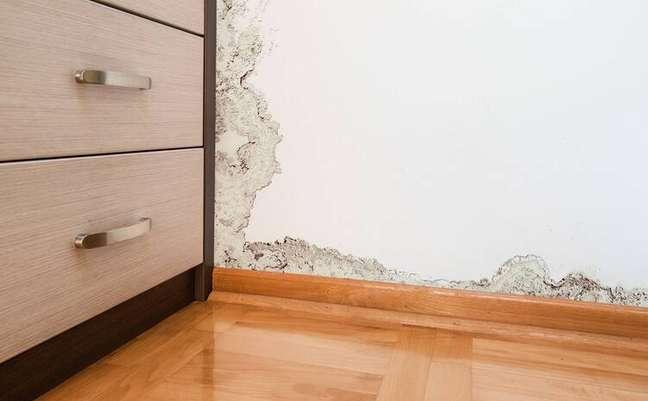 7. Tirar o mofo das paredes evita que os fungos danifiquem os móveis. Siga nossas dicas de como tirar mofo da parede – Foto iStock