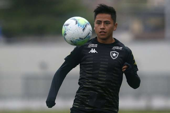 Alexander Lecaros não joga mais pelo Botafogo (Foto: Vítor Silva/Botafogo)