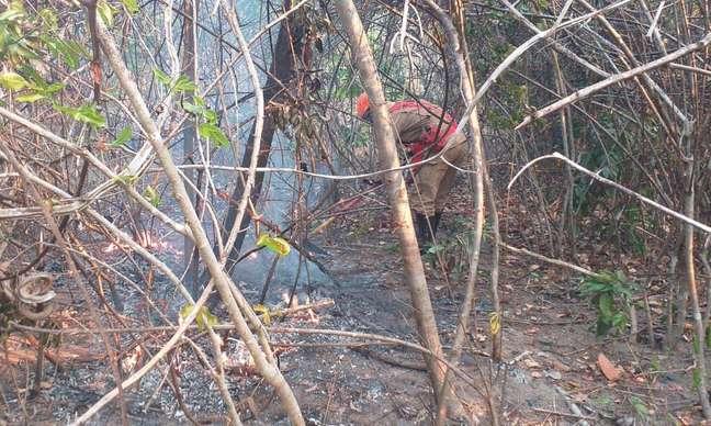Incêndio na Chapada dos Veadeiros já dura cinco dias