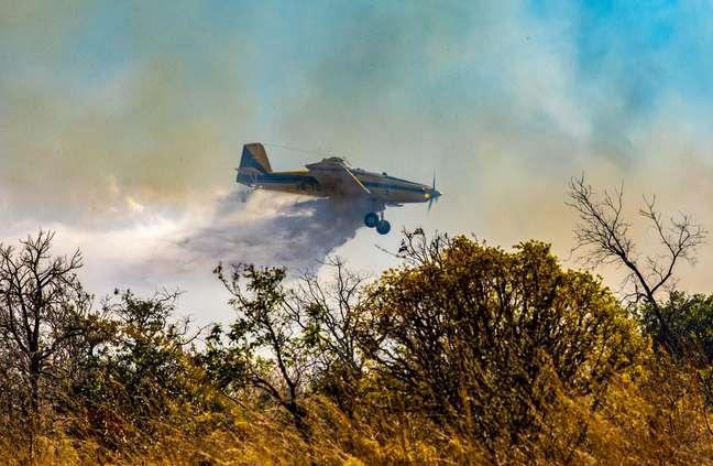 Incêndio em Goiás já consumiu mais de 18 mil hectares