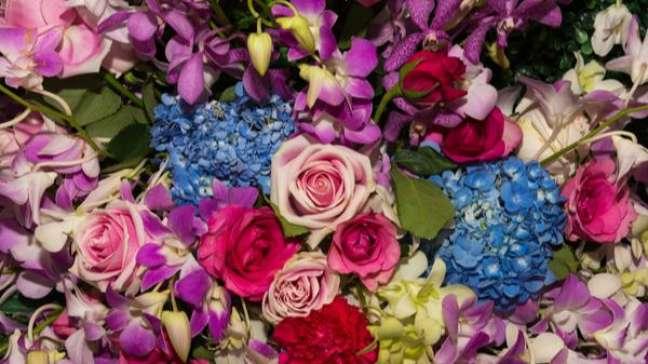 Conheça o significado, o poder que as flores carregam e a influência que elas exercem - Shutterstock