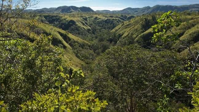 A Serra do Tombador tem 8.700 hectares, onde ficam 437 espécies de plantas e 531 espécies de animais