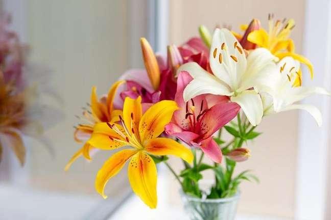 Desvende a sua personalidade com a ajuda dos símbolos da primavera - Shutterstock.