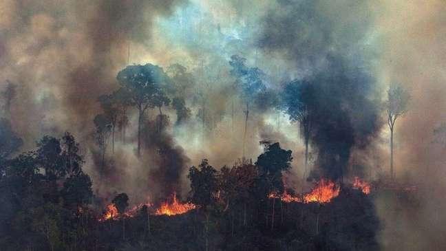 Um governo de centro-esquerda alemão potencialmente daria mais atenção à América Latina e ainda mais ênfase ao controle das mudanças climáticas, diz analista