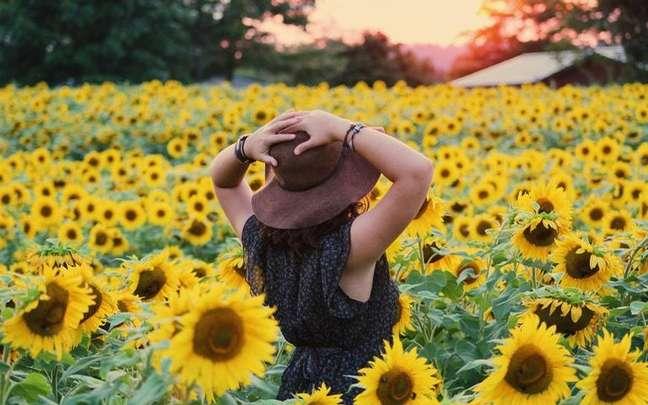 Descubra os inúmeros benefícios que uma única flor pode trazer para a sua vida - Foto de Noelle Otto no Pexels