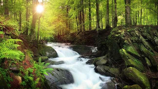 """Problemas estruturais de saúde afetam impacto individual """"rio abaixo"""""""