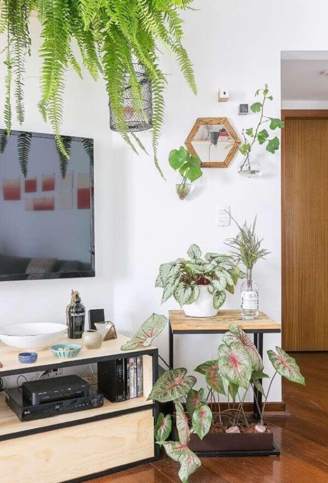 62. Vasos com plantas para decoração de sala simples com TV na parede – Foto: Gisele Rampazzo