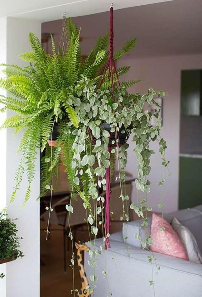 20. Decoração de sala com plantas pendentes – Foto: Revista Artesanato