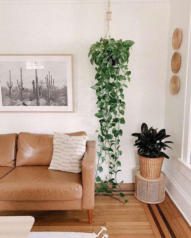 36. Sofá de couro marrom para decoração de sala com plantas – Foto: Base Roots