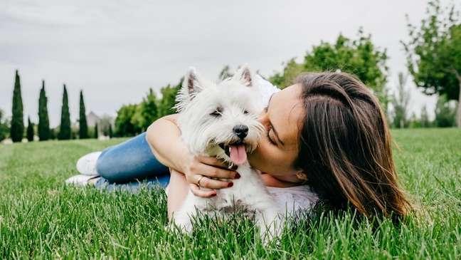 Saiba como os pets podem ajudar no equilíbrio emocional de seus tutores