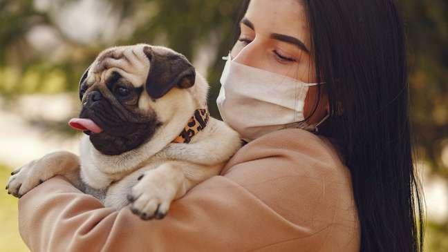 Animais, no entanto, também precisam de cuidados