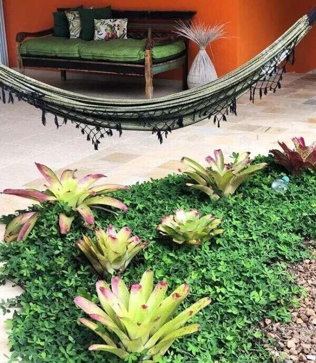 26. As bromélias trazem vida para o jardim da casa simples. Projeto por Cris Nardinelli Paisagismo