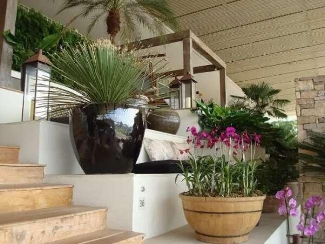84. Use a abuse de vasos de plantas na decoração da casa simples. Fonte: Free Image