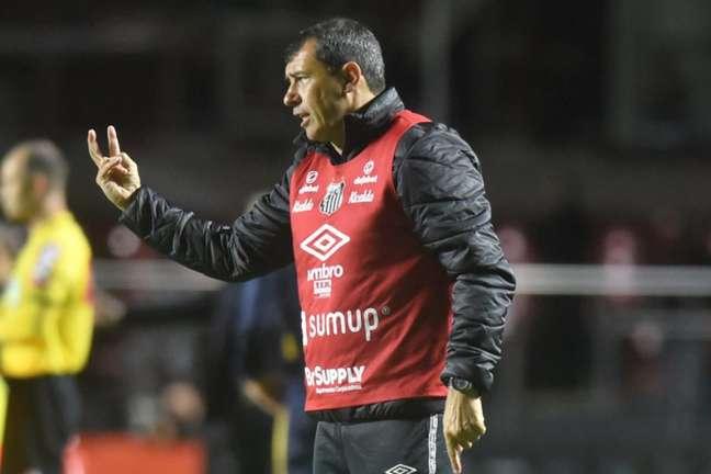 O técnico Fábio Carille agradeceu aos torcedores pelo apoio ao time (Foto: Ivan Storti/Santos FC)
