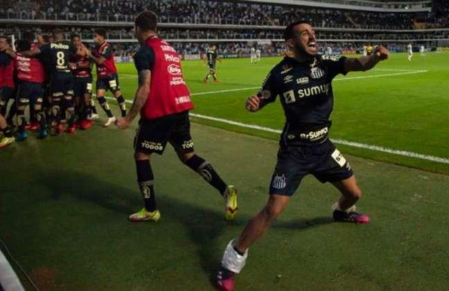 Camacho comemora o gol da vitória do Santos sobre o Grêmio na Vila (Foto: Ivan Storti/ Santos FC)