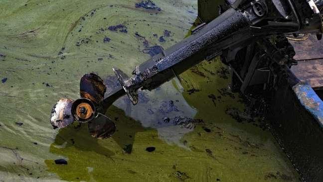 Embarcações também são afetadas pela contaminação
