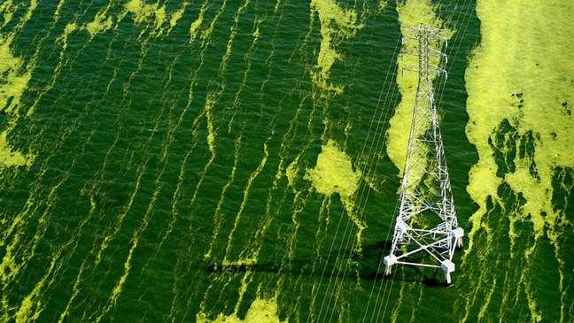 Lago de Maracaibo sofre com poluição