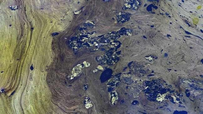 Derramamentos de óleo e presença de algas estão afetando seriamente lago mais importante da Venezuela