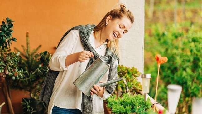 Para ter o próprio pomar na varanda do apartamento, basta ter alguns cuidados para consumo!