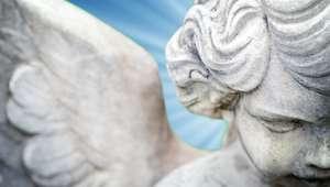 Bênção e proteção: faça oração para o seu anjo da guarda
