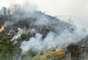 Debido a la magnitud del incendio, los ministros españoles de Defensa, Pedro Morenés, y de Agricultura y Medio Ambiente, Miguel Arias Cañete, se trasladaron a la zona afectada para comprobar sobre el terreno los daños y la evolución del fuego.