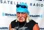 En la web apareció un video sexual de dos minutos de Hulk Hogan teniendo relacionescon una misteriosa morena quien sería Heather Clem, exesposa de su mejor amigo, el presentador de radio 'Bubba la Esponja Amorosa'.