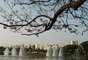 Projetado pelo arquiteto Oscar Niemeyer e pelo paisagista Roberto Burle Marx, o parque foi encomendado para celebrar o aniversário de 400 anos de São Paulo, em 25 de janeiro 1954, mas só foi inaugurado oficialmente em 21 de agosto