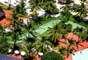 Arraial d'Ajuda Ecoparque, Arraial dAjuda, BA: parque aquático ecológico frente à praia de Mucugê, o Arraial d'Ajuda Ecoparque tem diversão para curtir em família num marco natural paradisíaco. Além de toboáguas e outras atrações aquáticas, o parque tem outras atividades para as crianças, como rapel, parede de escalada e tirolesa