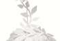 A cúpula folhas, da Imaginarium, sai por R$ 149,90. Informações: (11) 3034-1051