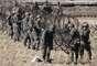 Militares sul-coreanos montam cercas durante a sessão de exercícios desta segunda-feira. A Coreia do Sul, através do Ministério da Unificação, assegurou que o acordo de armistício não foi invalidado, pois, legalmente, sua anulação requer a conformidade das duas partes, como indica o texto assinado pelas duas Coreias no dia 27 de julho de 1953
