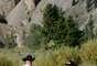 McGinnis Meadows Cattle & Guest Ranch, Montana - Em McGinnis Meadows, os turistas aprendem um pouco do método Natural Horsemanship, que lida com o instinto natural do cavalo, construindo confiança e respeito mútuo. Depois, cavalgam em trilhas e guiam rebanhos