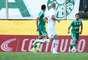 Na próxima rodada, Palmeiras mede forças no Estádio do Pacaembu contra o São Caetano