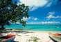 Guadalupe:Ilha em forma de borboleta, a Guadalupe está separada em duas partes, com diferentes paisagens e climas. A área conhecida como Basse-Terre, no oeste, é úmida e coberta por florestas tropicais e vulcões como o pico de La Soufrière, com 1.467 metros. Já a área do leste, Grande-Terre, é mais seca e tem suas paisagens dominadas por plantações de açúcar. A capital, Pointe-à-Pitre, tem todos os confortos de uma grande cidade, com acesso às magníficas praias espalhadas pela ilhas