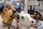 Foliões usam máscaras de esquilo e cavalo no bloco Volta Alice no bairro de Laranjeiras no Rio de Janeiro