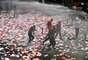 Turquia: torcidas rivais de unem em protesto contra polícia