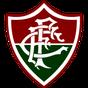 84528fa6a1c5e Fluminense leva sócios-torcedores em voo fretado para Santa Catarina