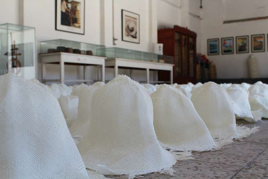 79e5446b89bf4 Equador  veja como é feito o famoso chapéu do Panamá