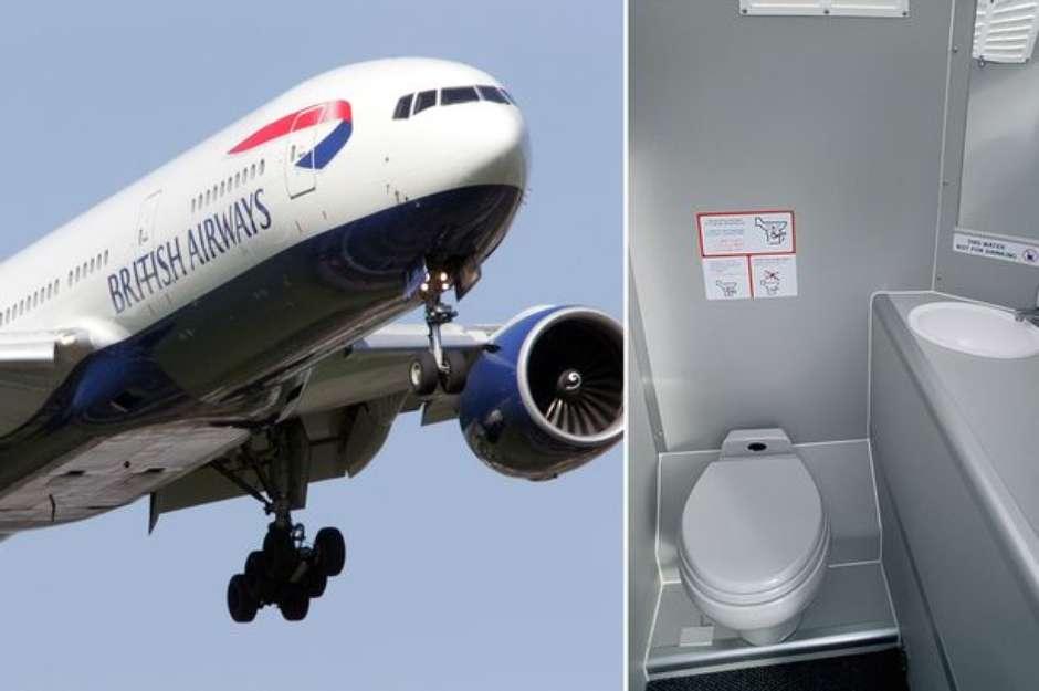 Resultado de imagem para cagando durante o voo