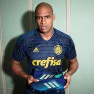 Palmeiras estreará nova camisa de goleiro contra a Chape  veja fotos e8e51e88cfbc3
