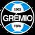 Grêmio é campeão nacional após 15 anos