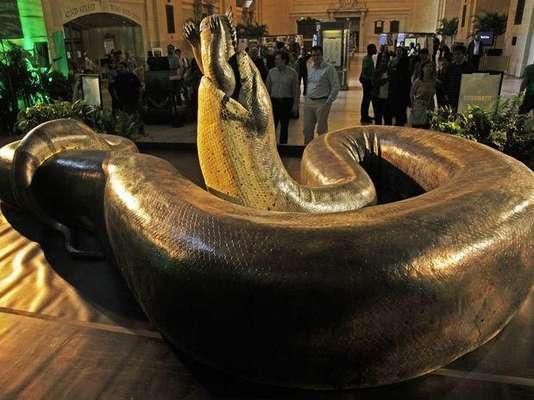 Una réplica en tamaño real de la serpiente más grande del mundo, la Titanoboa, invade con sus más de catorce metros y medio de largo la emblemática estación Grand Central de Nueva York, donde pasajeros y curiosos pueden acercarse a un reptil que vivió en Colombia hace 65 millones de años.