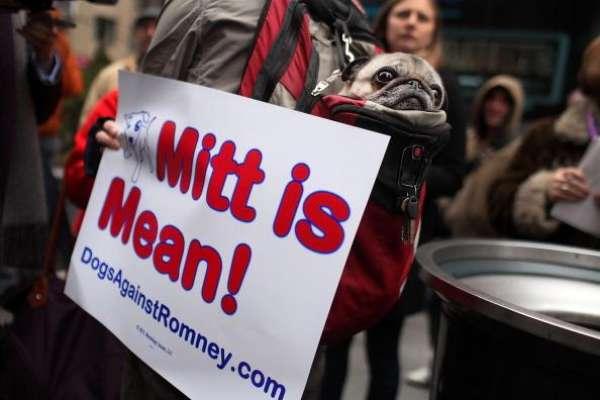 """La noticia de que Barack Obama pudo haber comido carne de perro en alguna etapa de su vida, destapó una serie de rarezas en el resto de los candidatos. Por ejemplo, salió a la luz -una vez más- el problema que tuvo Romney con los defensores de animales por haber llevado a su mascota en el techo del auto. Pero no son los únicos, ni tampoco, los que han hecho las cosas """"más raras""""."""