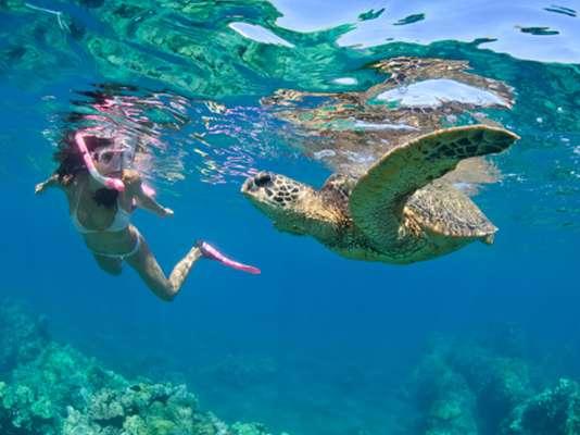 Cidade turística é um paraíso para quem gosta de entrar em contato com a água e com animais marinhos
