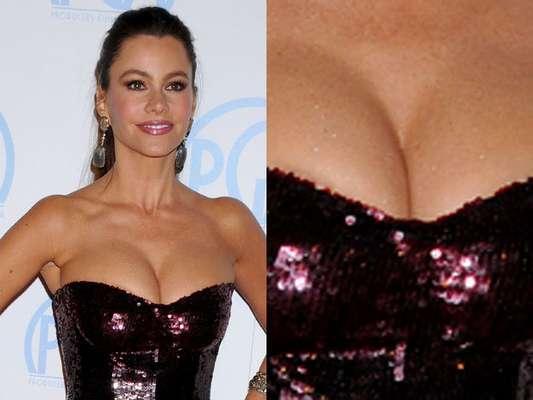 ENERO: Sofía Vergara nos regaló este sugerente vestido en los premios anuales 'Guild'.